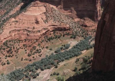 Le Canyon de Chelly : Verdoyant grâce au Chinle Wash