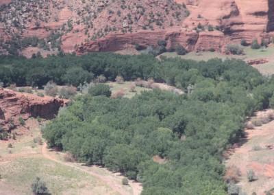 Le fond du canyon est habité par des fermiers Navajos